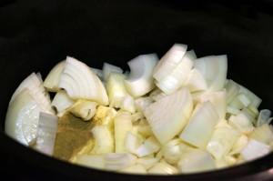 P003 02 Onions